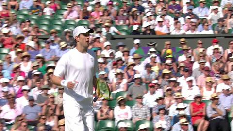 Wimbledon 2013 Day 12 Highlights