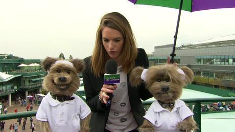 Hacker and Dodge Live @ Wimbledon Interview