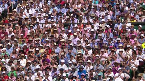 HSBC Perfect Play: Marion Bartoli at Wimbledon 2013