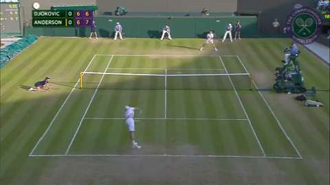 2015 Day 8 Highlights, Novak Djokovic vs Kevin Anderson