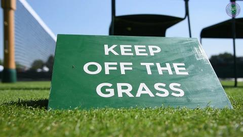 Opening of the Wimbledon grass courts